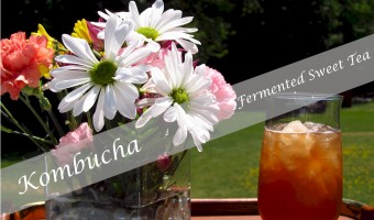 How to Make Kombucha – Fermented Sweet Tea
