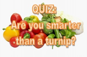 Are you smarter than a turnip