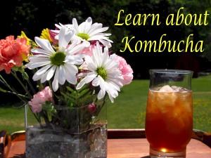Learn about Kombucha Recipe Renegade
