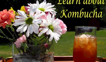Learn about Kombucha