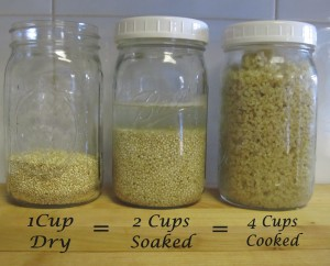 One cup dry quinoa seeds equals 4 cups cooked.