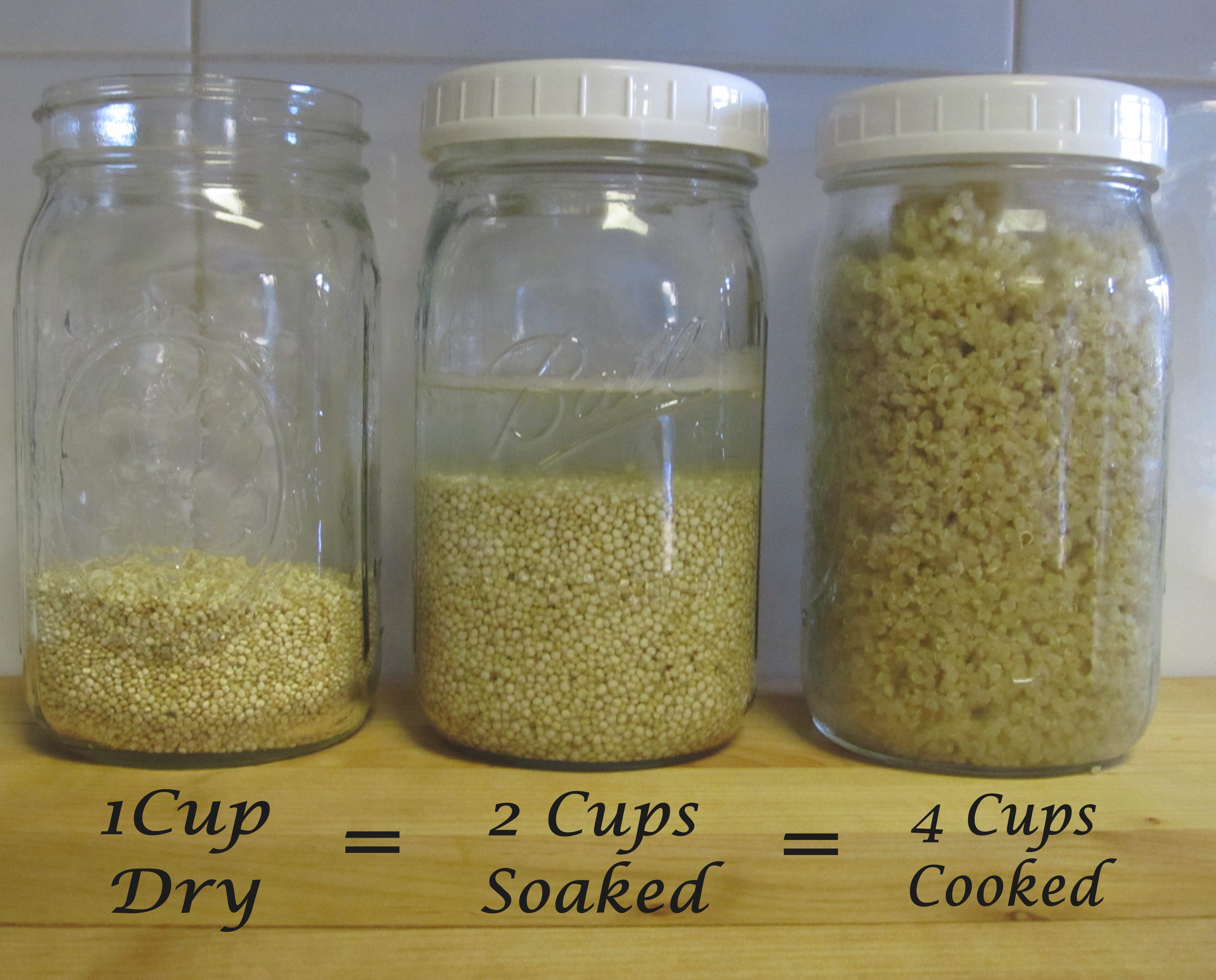 One Cup Dry Quinoa Seeds Equals 4 Cups Cooked