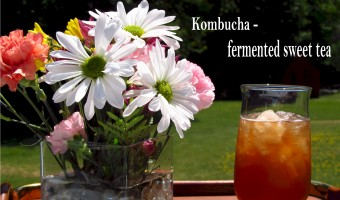 Kombucha Misinformation
