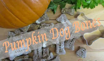 Pumpkin Dog Bones (Biscuits)