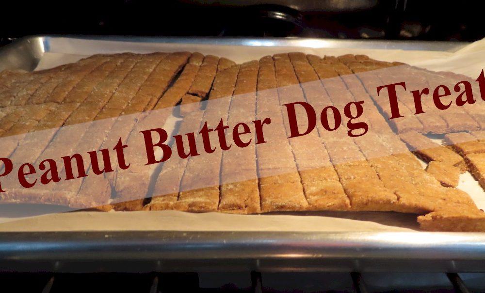Peanut Butter Dog Treats (Bisquits)
